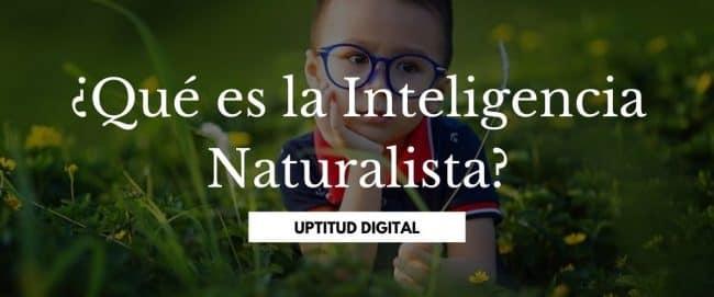 ¿Qué es la Inteligencia Naturalista?